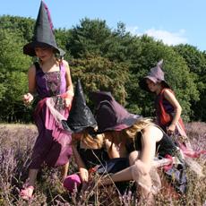 Sprankel Heksen en Tovenaars Verkleedkist Kleding Hilversum